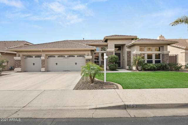 6527 W Robin Lane, Glendale, AZ 85310 (MLS #6202413) :: The Laughton Team