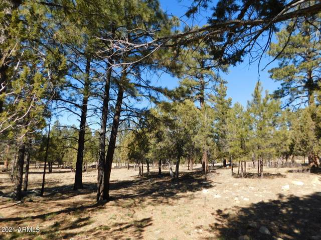 2166 Galo Drive Drive, Happy Jack, AZ 86024 (MLS #6202507) :: The Property Partners at eXp Realty