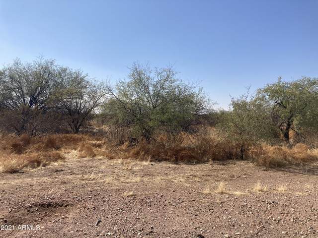 32XXX N 225th Avenue, Wittmann, AZ 85361 (MLS #6202565) :: The Property Partners at eXp Realty