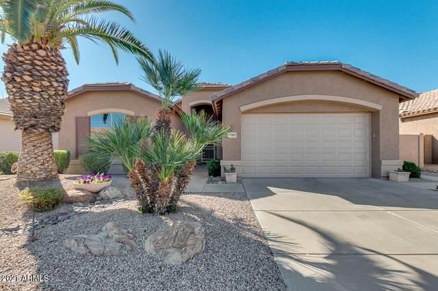 17961 W Udall Drive, Surprise, AZ 85374 (MLS #6202581) :: Arizona Home Group