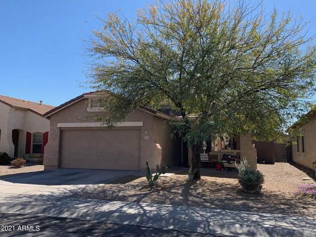 17211 W Saguaro Lane, Surprise, AZ 85388 (MLS #6202622) :: The Daniel Montez Real Estate Group