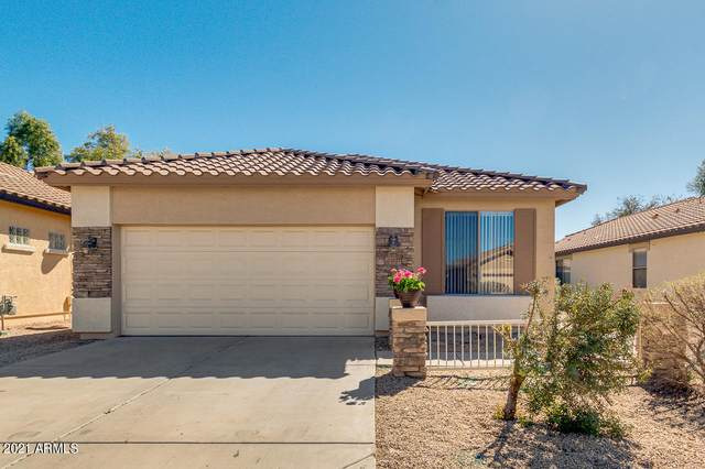 21027 E Sonoqui Drive, Queen Creek, AZ 85142 (MLS #6202634) :: Executive Realty Advisors