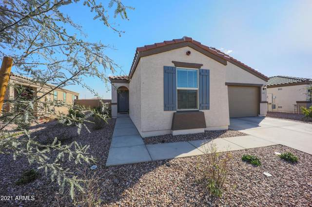 19903 W Jackson Street, Buckeye, AZ 85326 (MLS #6202656) :: The Property Partners at eXp Realty