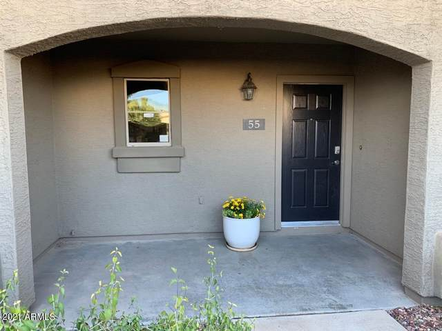 16825 N 14TH Street #55, Phoenix, AZ 85022 (MLS #6202679) :: Nate Martinez Team