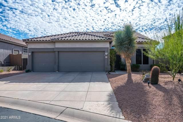 3537 N Paseo Del Sol Street, Mesa, AZ 85207 (MLS #6202758) :: Klaus Team Real Estate Solutions