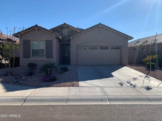 3923 E Desert Broom Drive, Chandler, AZ 85286 (#6202797) :: The Josh Berkley Team