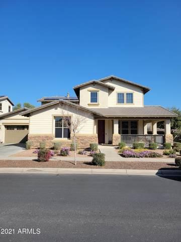 13621 N 151ST Drive, Surprise, AZ 85379 (MLS #6202812) :: Long Realty West Valley