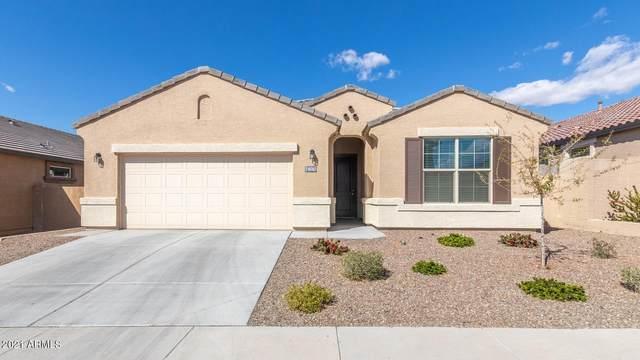 10762 W Bronco Trail, Peoria, AZ 85383 (MLS #6202887) :: The Laughton Team