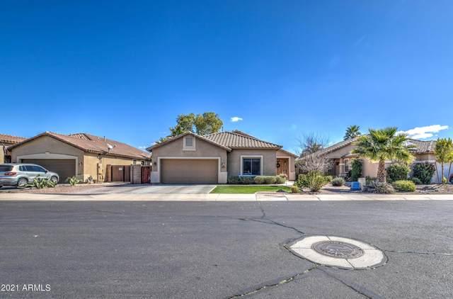 6061 S Topaz Place, Chandler, AZ 85249 (MLS #6202959) :: The Laughton Team