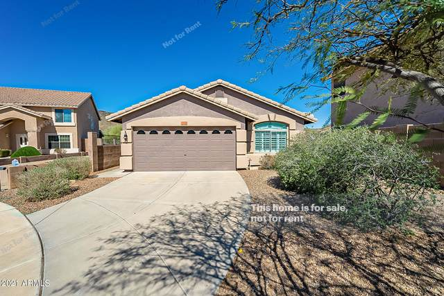 2124 E Vista Bonita Drive, Phoenix, AZ 85024 (MLS #6202984) :: Executive Realty Advisors