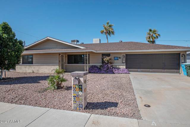 17648 N 24TH Drive, Phoenix, AZ 85023 (MLS #6203046) :: Yost Realty Group at RE/MAX Casa Grande