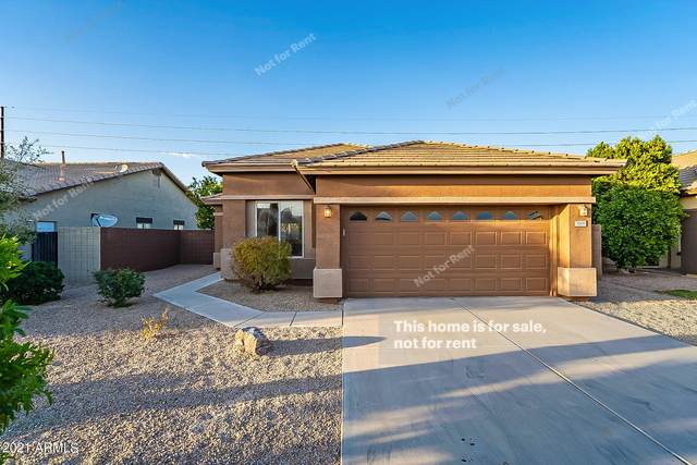 3668 E Derringer Way, Gilbert, AZ 85297 (MLS #6203047) :: The Laughton Team