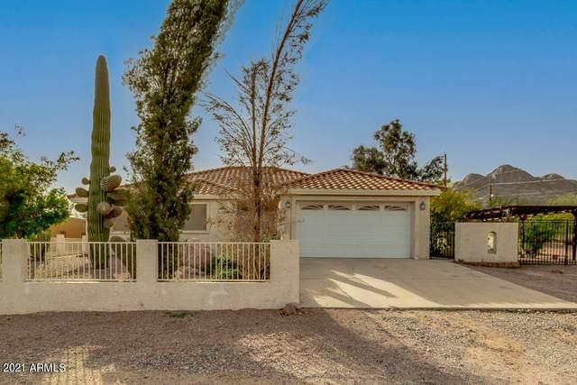 5562 S Jacaranda Road, Gold Canyon, AZ 85118 (MLS #6203068) :: Sheli Stoddart Team   M.A.Z. Realty Professionals