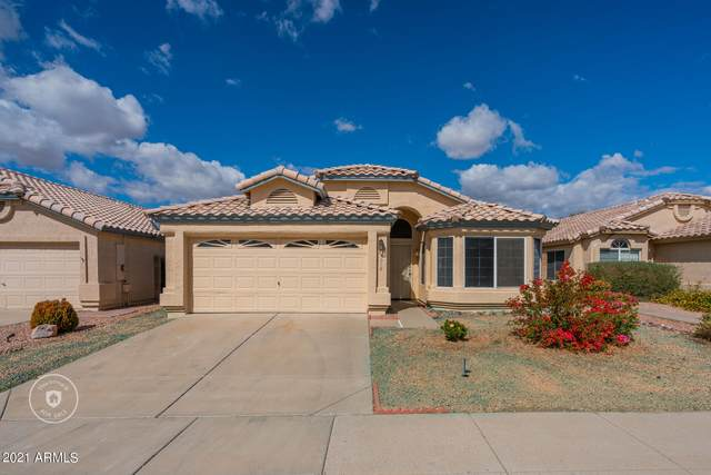 5018 W Ponderosa Lane, Glendale, AZ 85308 (MLS #6203078) :: The Laughton Team