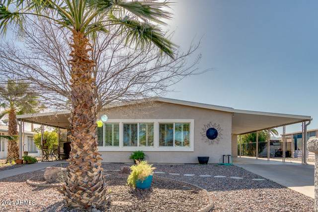 8932 E Sun Lakes Boulevard S, Sun Lakes, AZ 85248 (MLS #6203092) :: Zolin Group