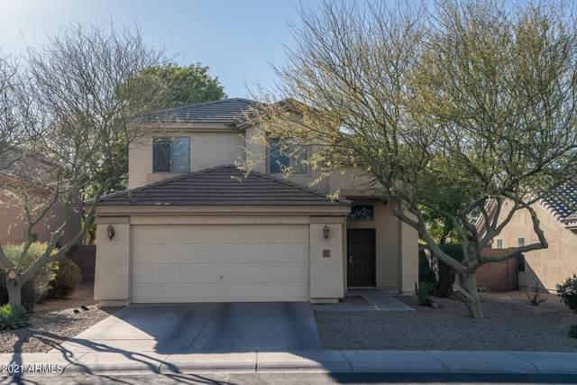 4322 N 124TH Avenue, Avondale, AZ 85392 (MLS #6203120) :: The Garcia Group