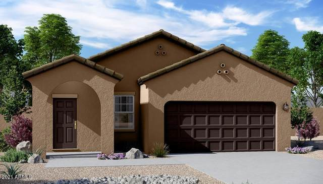 19576 W Annika Drive, Litchfield Park, AZ 85340 (MLS #6203216) :: Executive Realty Advisors
