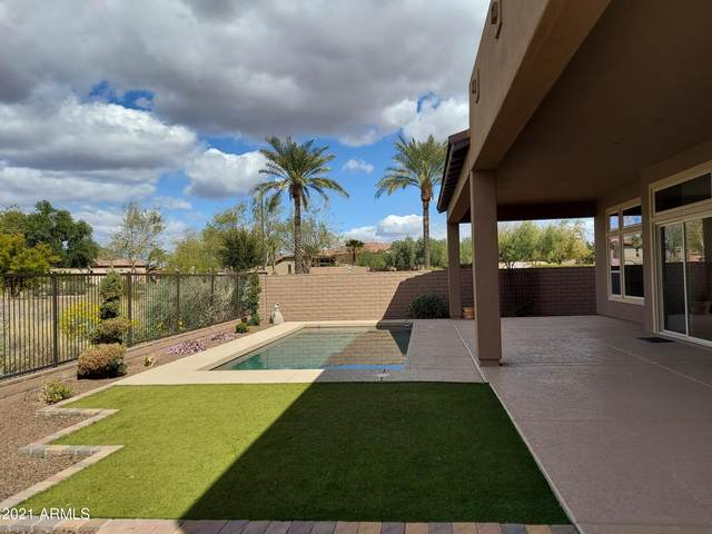 29250 N 129TH Lane, Peoria, AZ 85383 (MLS #6203257) :: Power Realty Group Model Home Center