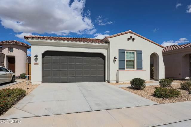 2816 E Sunland Avenue, Phoenix, AZ 85040 (MLS #6203295) :: Power Realty Group Model Home Center