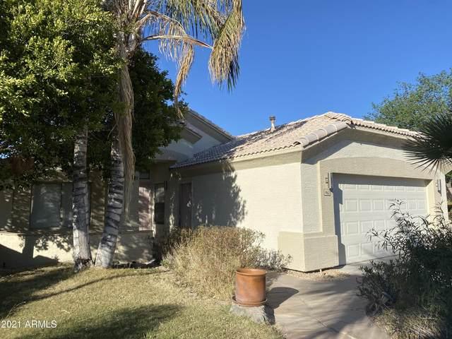 462 W Century Court, Gilbert, AZ 85233 (MLS #6203359) :: Midland Real Estate Alliance