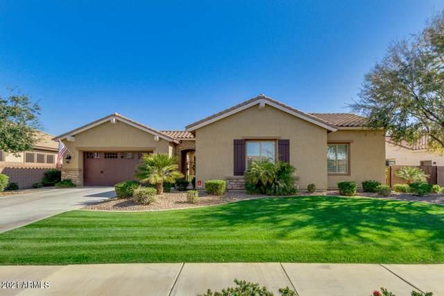 4203 S Ethan Place, Chandler, AZ 85248 (MLS #6203366) :: Midland Real Estate Alliance