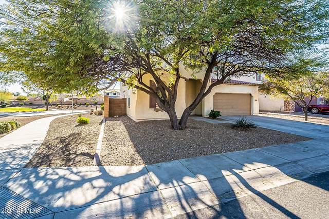 14836 N 173RD Drive, Surprise, AZ 85388 (MLS #6203369) :: Yost Realty Group at RE/MAX Casa Grande