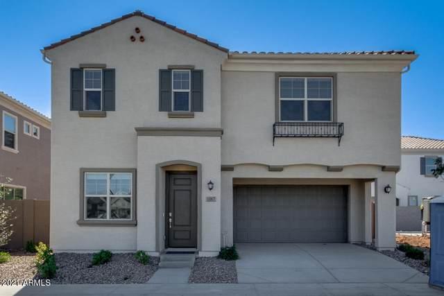 1067 E Chapman Drive, Chandler, AZ 85286 (MLS #6203383) :: Yost Realty Group at RE/MAX Casa Grande