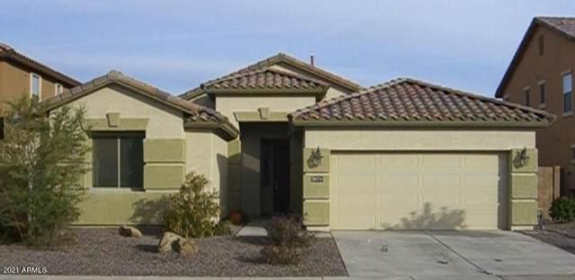 3674 E Bluebird Place, Chandler, AZ 85286 (MLS #6203395) :: Zolin Group