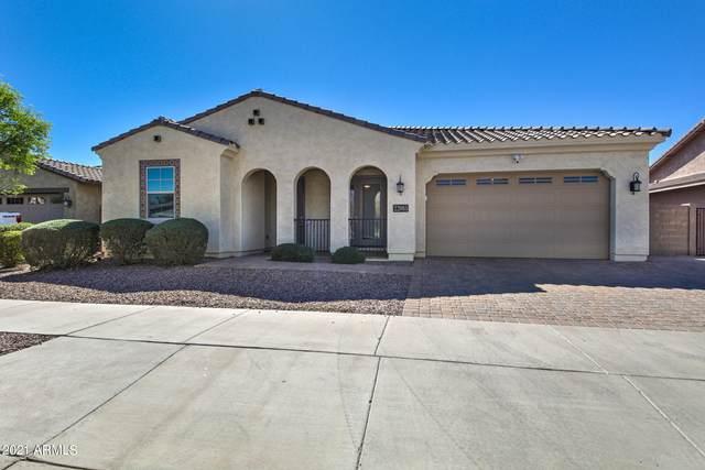22085 E Rosa Road, Queen Creek, AZ 85142 (MLS #6203425) :: Midland Real Estate Alliance