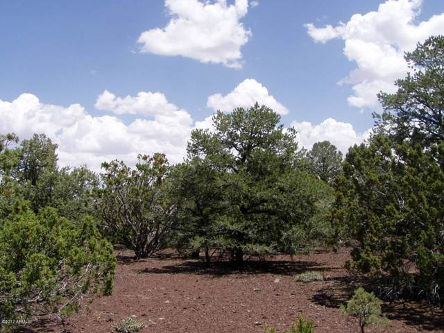 23 N Mountain Pine Road, Concho, AZ 85924 (MLS #6203509) :: The Laughton Team