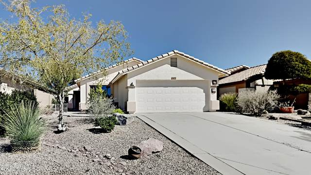 3679 S Conestoga Road, Apache Junction, AZ 85119 (MLS #6203531) :: Devor Real Estate Associates