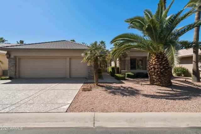 9037 E Nacoma Drive, Sun Lakes, AZ 85248 (MLS #6203558) :: Zolin Group