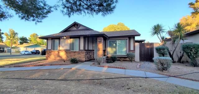 5135 E Evergreen Street #1166, Mesa, AZ 85205 (MLS #6203581) :: Zolin Group
