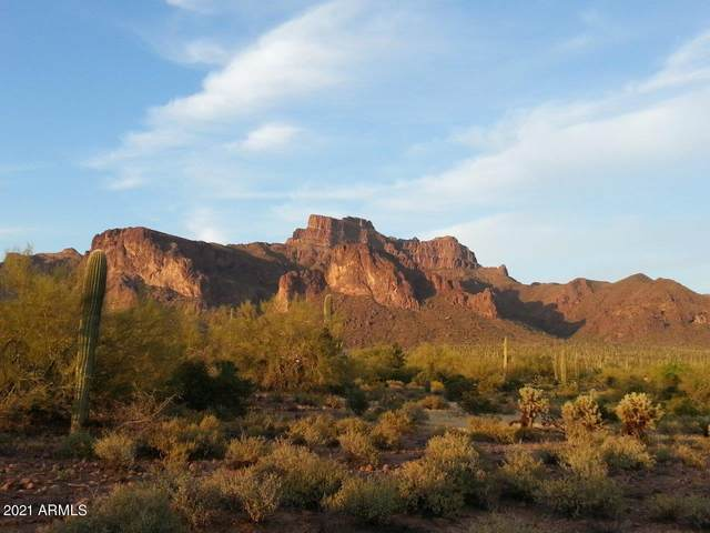 6001 E Roosevelt Street, Apache Junction, AZ 85119 (MLS #6203653) :: Devor Real Estate Associates