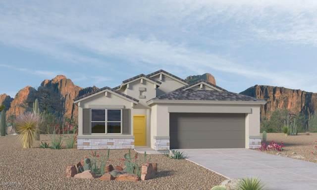 625 N 17TH Street, Coolidge, AZ 85128 (MLS #6203717) :: Zolin Group