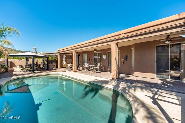 3713 W Fetlock Trail, Phoenix, AZ 85083 (MLS #6203757) :: Zolin Group