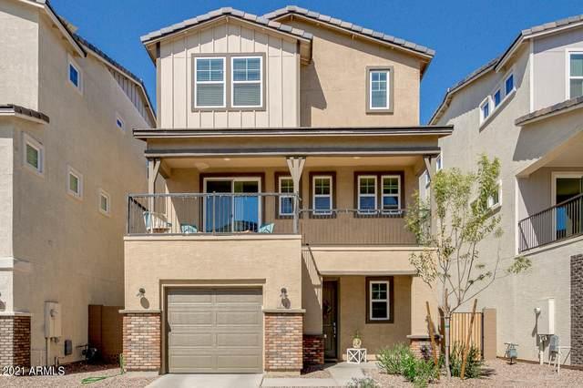 780 W Flintlock Way, Chandler, AZ 85286 (MLS #6203775) :: Yost Realty Group at RE/MAX Casa Grande