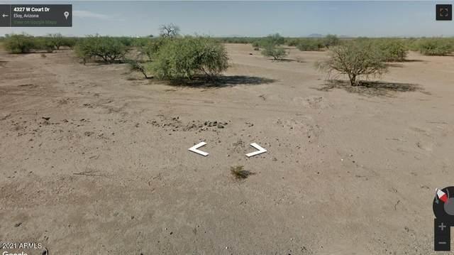 4300 W Court Drive, Eloy, AZ 85131 (MLS #6203809) :: John Hogen | Realty ONE Group