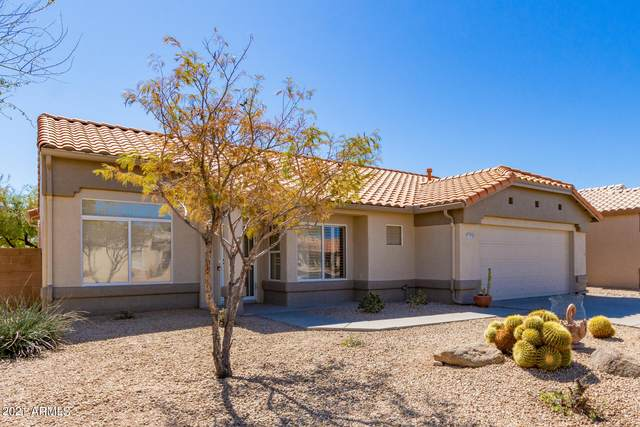 13639 W Ravenswood Drive, Sun City West, AZ 85375 (MLS #6203866) :: Dijkstra & Co.
