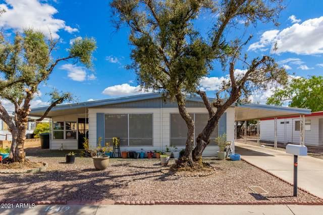 16419 N 35th Place, Phoenix, AZ 85032 (MLS #6203906) :: The Luna Team