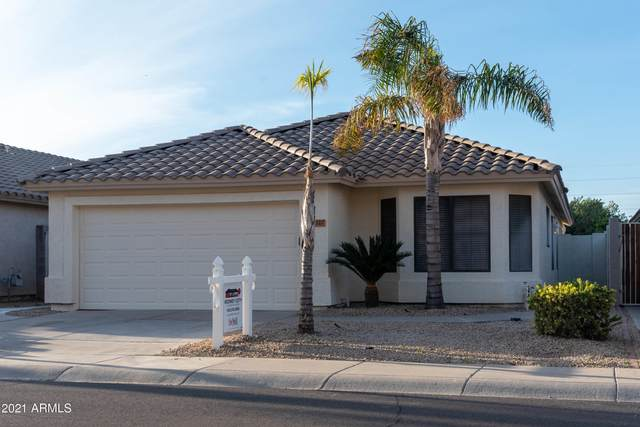 3327 E Tonopah Drive, Phoenix, AZ 85050 (MLS #6203922) :: Selling AZ Homes Team