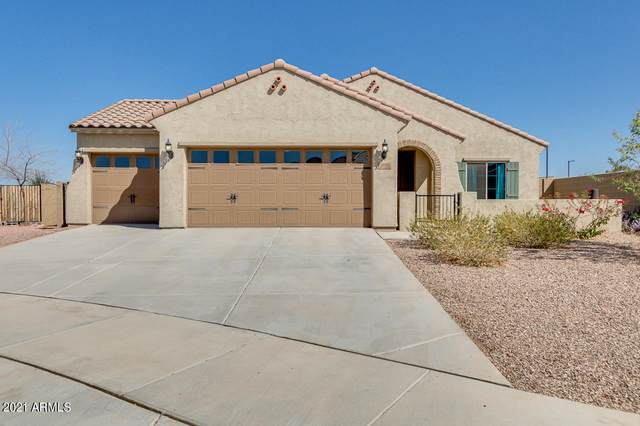 17518 W Oberlin Way, Surprise, AZ 85387 (MLS #6203929) :: The Laughton Team