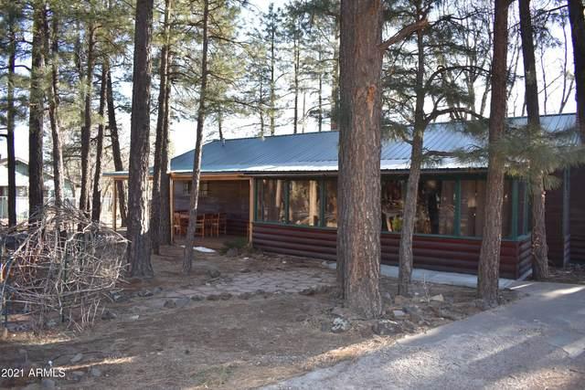 2669 Hidden Pines Drive, Lakeside, AZ 85929 (MLS #6203942) :: Yost Realty Group at RE/MAX Casa Grande