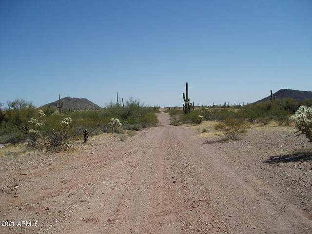 30588 W Galvin Street, Unincorporated County, AZ 85361 (MLS #6203980) :: The Newman Team