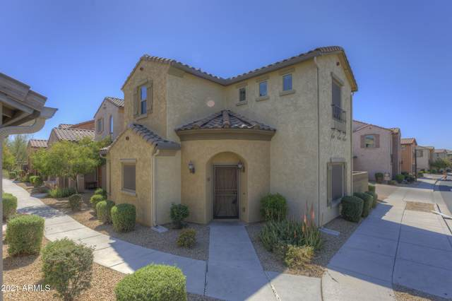 3667 E Zachary Drive, Phoenix, AZ 85050 (MLS #6204075) :: Executive Realty Advisors