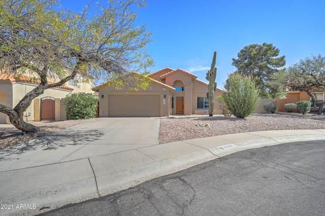 14609 S 32ND Street, Phoenix, AZ 85044 (MLS #6204119) :: CANAM Realty Group