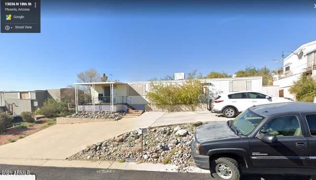 13036 N 18TH Street, Phoenix, AZ 85022 (MLS #6204408) :: Executive Realty Advisors