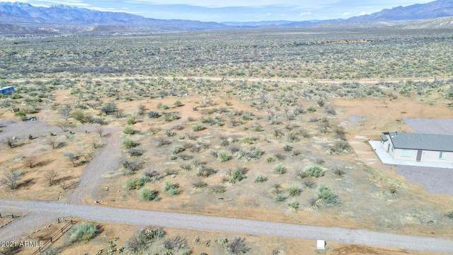 XXX W Brittlebush Trail, Tonto Basin, AZ 85553 (MLS #6205046) :: The Carin Nguyen Team