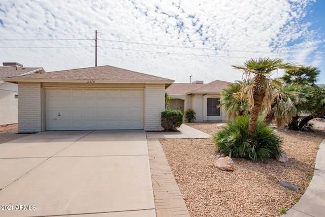 2370 Leisure World, Mesa, AZ 85206 (MLS #6205132) :: Yost Realty Group at RE/MAX Casa Grande