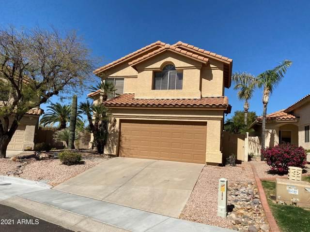 10010 E Celtic Drive, Scottsdale, AZ 85260 (MLS #6205200) :: Yost Realty Group at RE/MAX Casa Grande